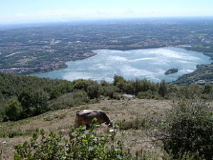 Pusiano_Lake_from_Cornilozzo